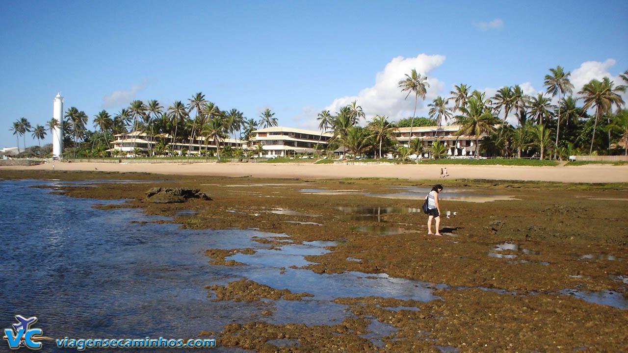 Praia do Forte na maré baixa