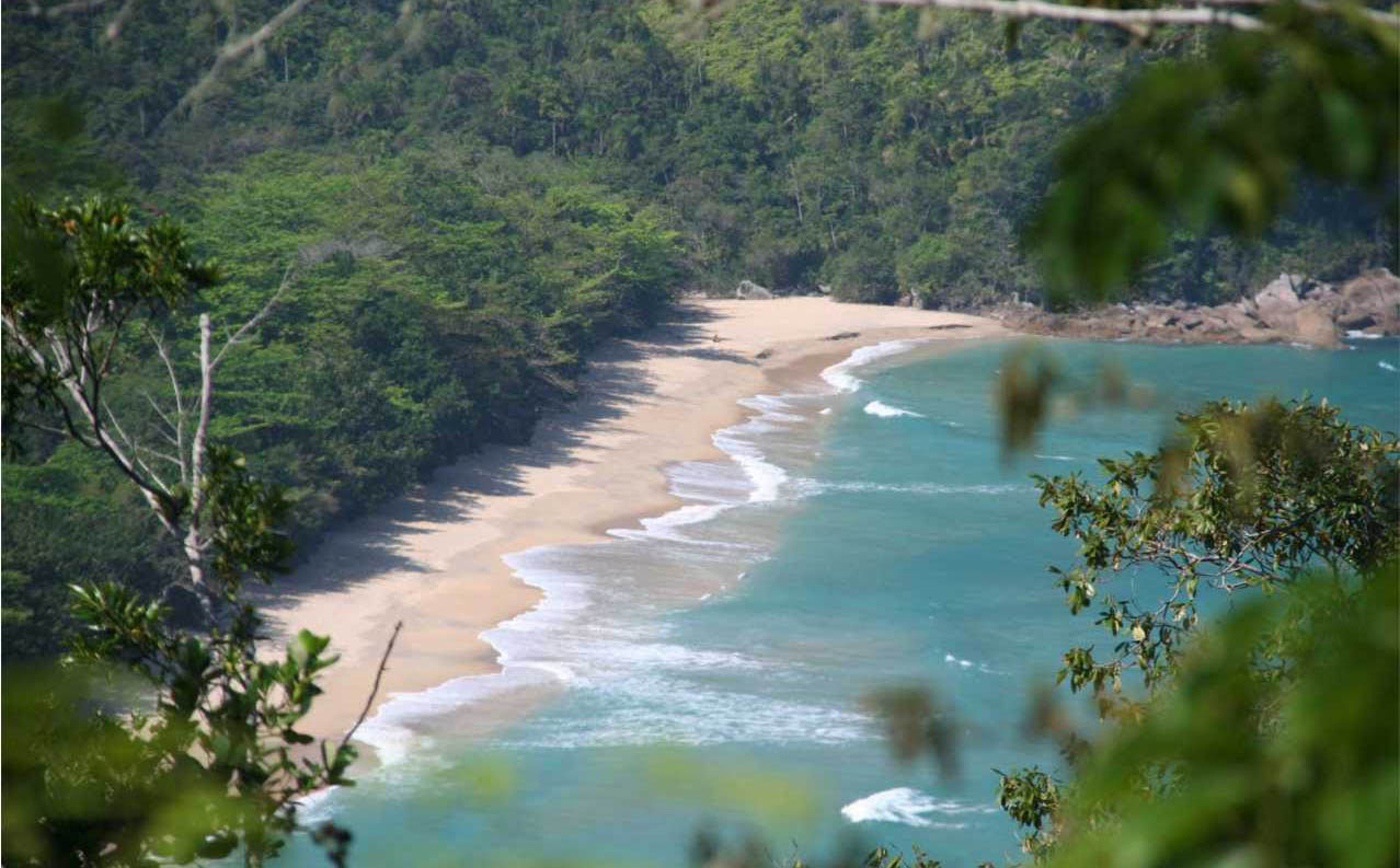 Ubatuba - Praia da Almada