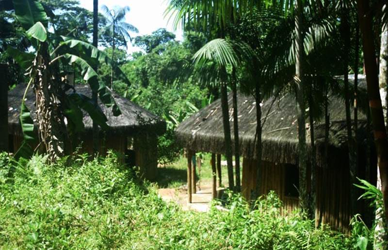 Aldeia dos índios Guaranis