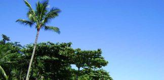 Praia do Pinto - Ilhabela