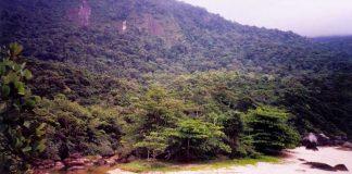 Praia da Caveira - Ilhabela