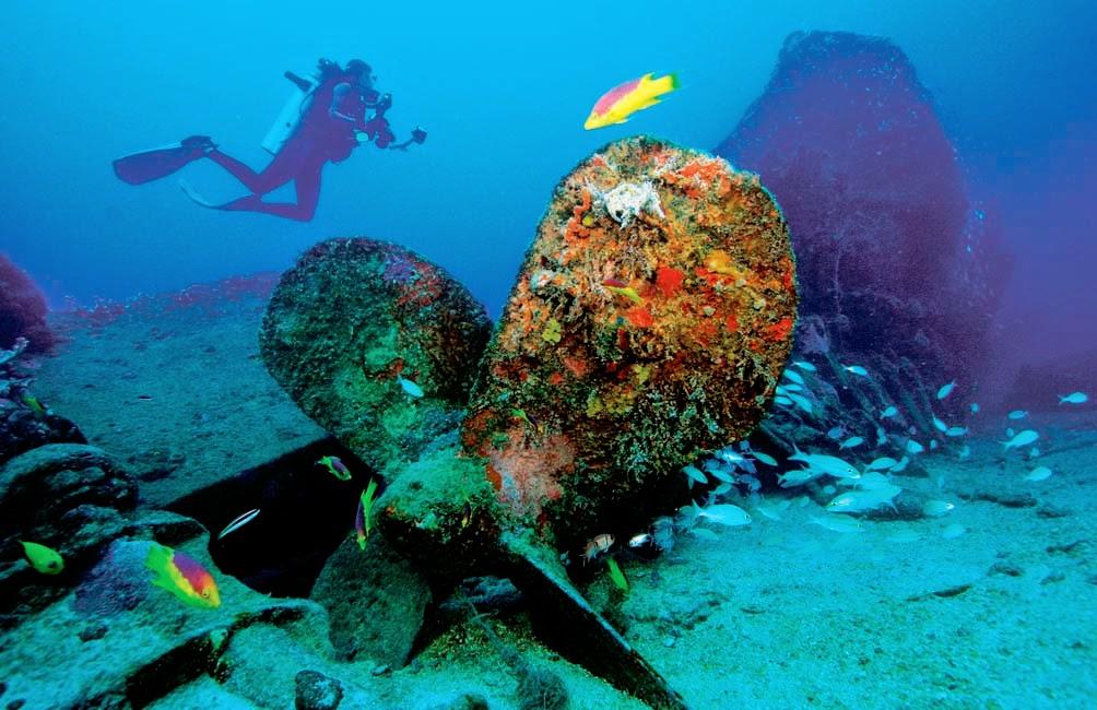 Mergulho nos naufrágios - Recife