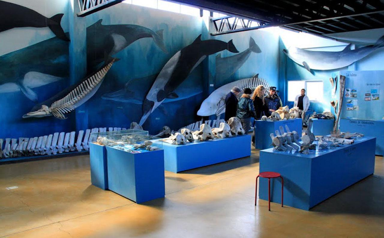 Museu Acatushun - Estância Harberton - Ushuaia