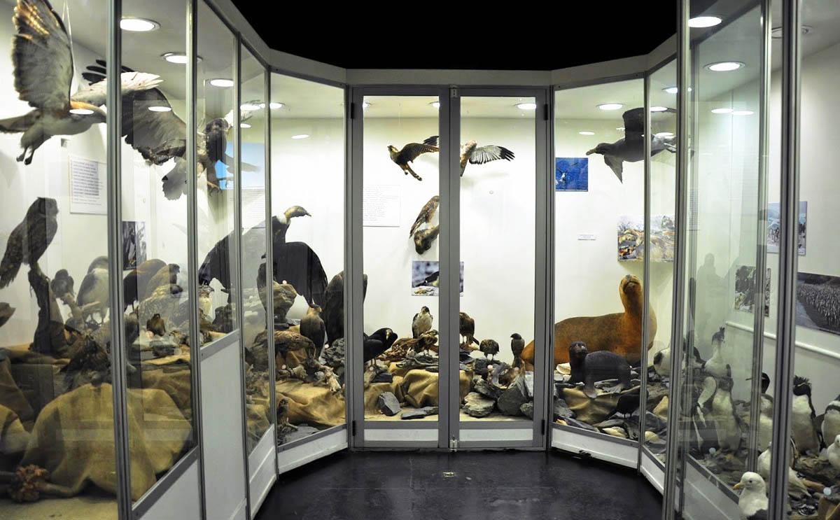 Museu do Fim do Mundo - Ushuaia