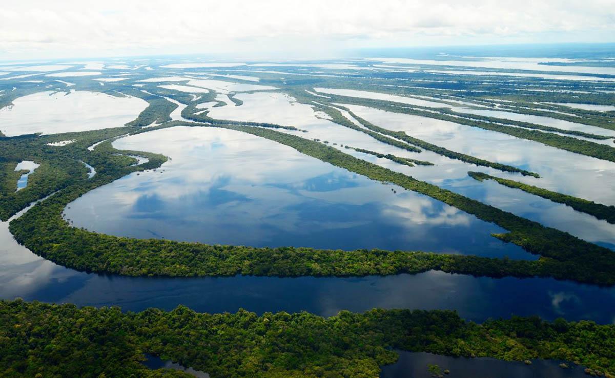 Arquipélago de Anavilhanas - Manaus