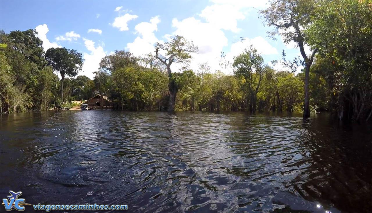 Igarapé do Rio Negro - Amazonas