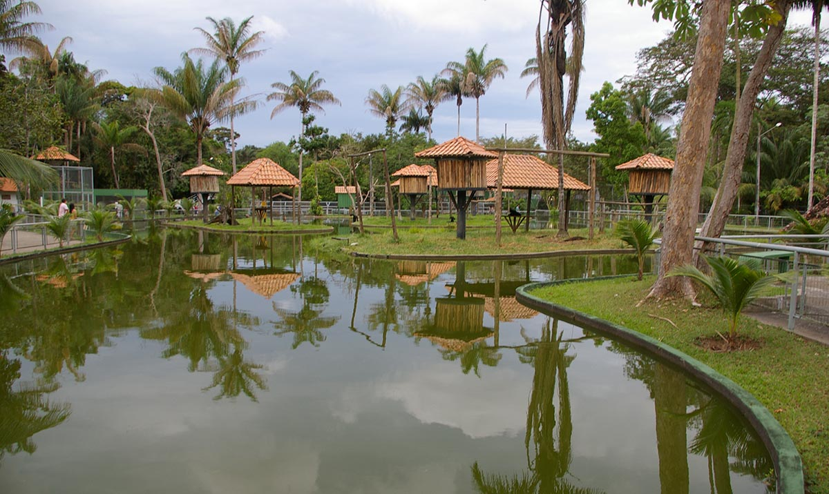 Zoológico do CIGS - Manaus