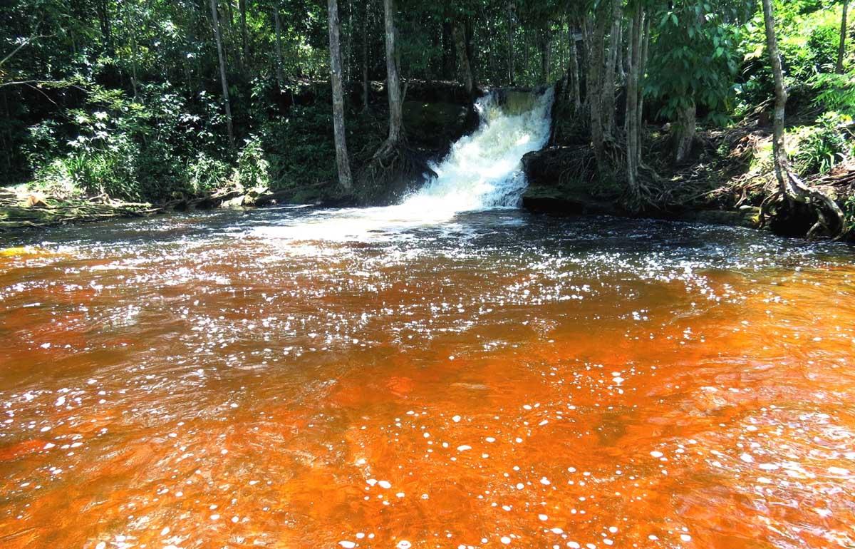 Cachoeira das Orquídeas - Presidente Figueiredo