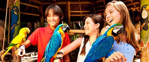 Bird Land - Hot Park - Rio Quente