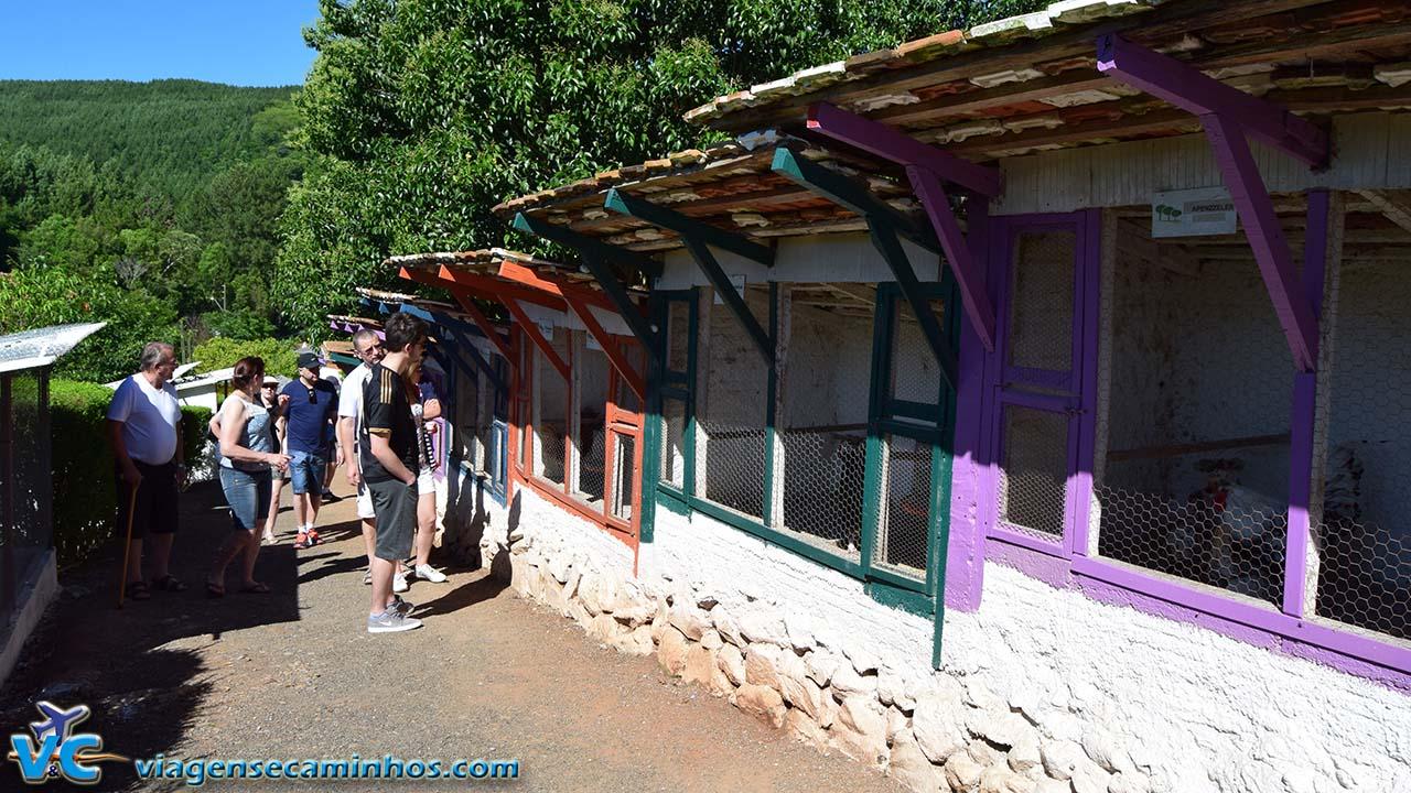 Mini Zoo do Parque Três Pinheiros