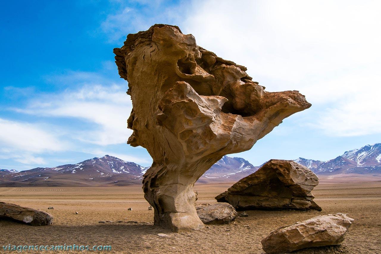 Arbol de Piedra - Bolívia