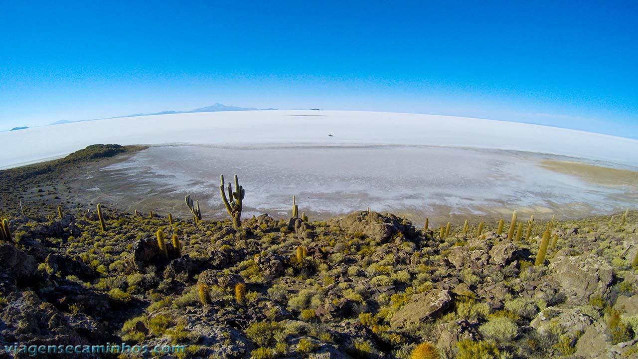 Ilha Pia Pia - Salar de Uyuni